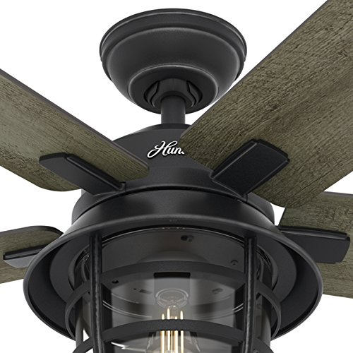 Hunter Fan 54 Weathered Zinc Outdoor Ceiling Fan With A Clear Glass Led Light Kit And Remote